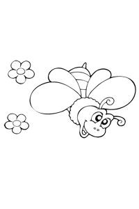 Butterfly - Animal Coloring Book