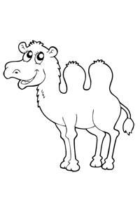 Camel - Animal Coloring Book
