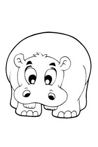 Hippo - Animal Coloring Book