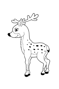 Reindeer - Kids Coloring Book