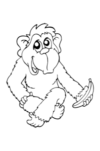 Monkey - Animal Coloring Book
