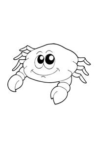 Fat Crab - Ocean Coloring Book
