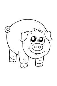 Pig - Animal Coloring Book