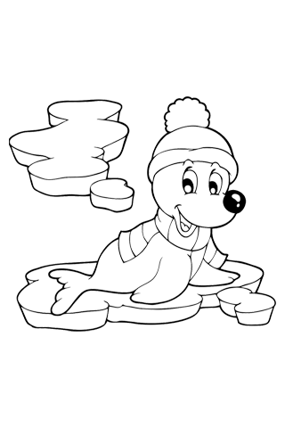 Seal on ice - Christmas Coloring Book