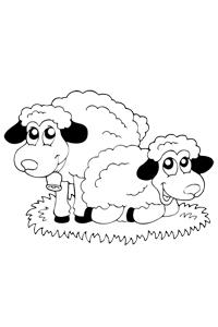 Sheep - Animal Coloring Book