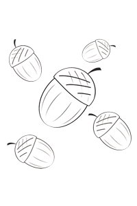 Fall Acorns - Thanksgiving Coloring Book