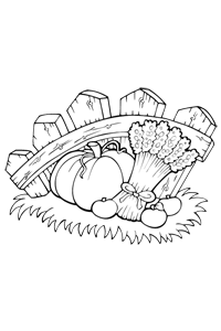 Fresh Farm Food - Thanksgiving Coloring Book